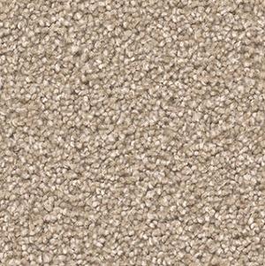 Sawgrass Exceptional Ii Carpet 99 Cent Floor Store