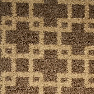 ENTHRALLED FLAIR CARPET COLLECTION