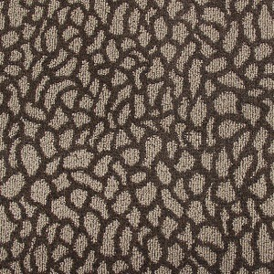 50t41 Pattern Media Room Carpet