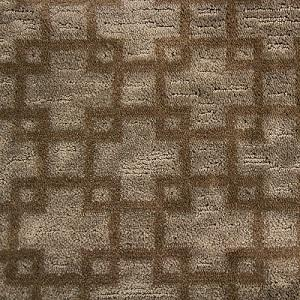 Buoyant Flair Nylon Carpet
