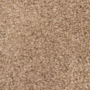 Charming Allure Polyester Carpet