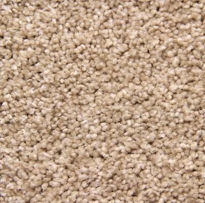 Cameo Exceptional Polyester Carpet