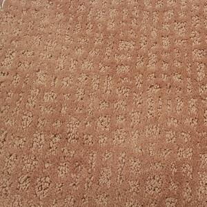 Desert Exceptional Polyester Carpet