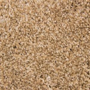 Homestead Soft Essentials Polyester Carpet