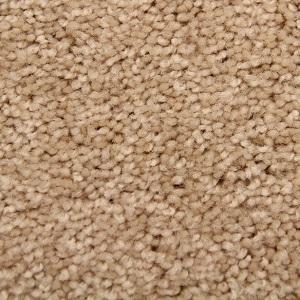 Satisfaction State of Mind Carpet