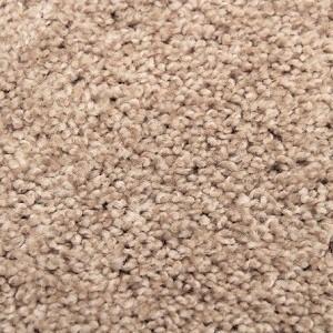Sawgrass Pikes Peak Polyester Carpet