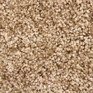 Tumbleweed Swanky Polyester Carpet