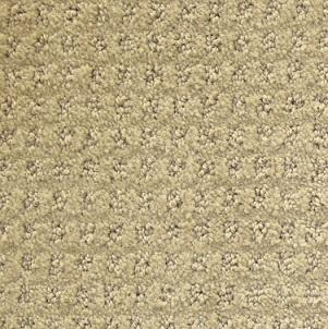 Turtle Dove Crown Mill Polyester Carpet