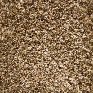 Angel Heavenly Polyester Plush Carpet