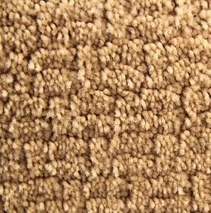 Ginger Tail Pintail Polyester Carpet Shaw