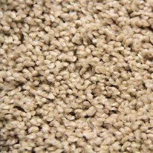 Cameo Spiffalicious Polyester Carpet
