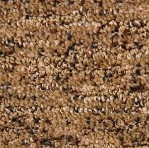 Tree Bark Dixie Polyester Carpet Swatch