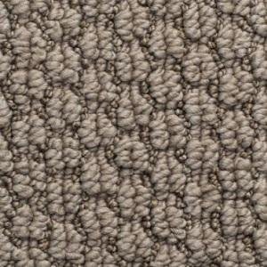 Canyon Clay Cathedral Hill Nylon Carpet Swatch