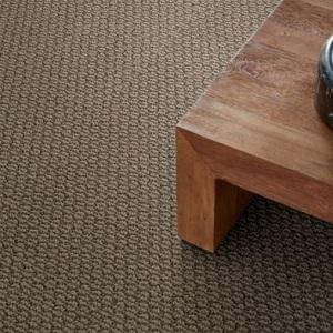 Canyon Clay Cathedral Hill Nylon Carpet
