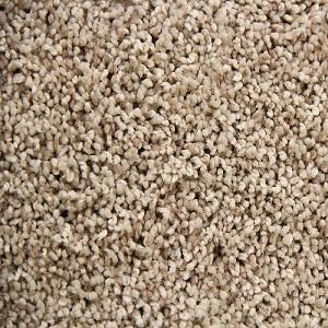 Coconut Cream Ritzy Polyester Carpet