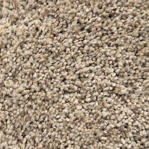 Iron Frost Swanky Polyester Carpet