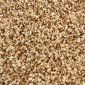 Lighthearted Flirtatious Nature Polyester Carpet