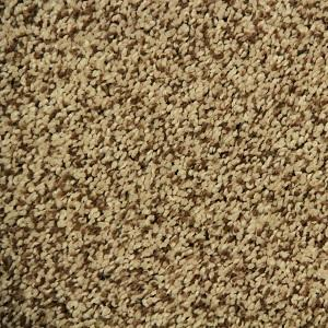 Swiss Coffee Ritzy Solutions Polyester Carpet