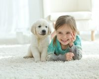 Child and puppy on carpet
